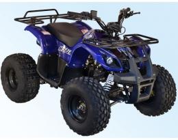 Детский / подростковый квадроцикл SkyBike Hyper 110 (синий, бензин)
