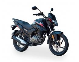 Мотоцикл SHINERAY DS200 (Черный)