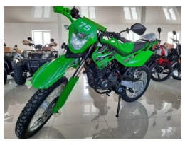 Мотоцикл SHINERAY XY200GY-11B LIGHT ENDURO (Зеленый)