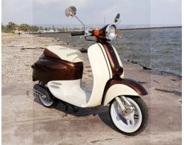 Honda Giorno (brown)
